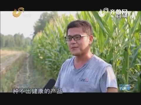 """山东农业新动能""""种""""出来的牛奶"""