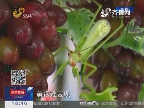 淄博:第十七届陶博会开幕 陶瓷琉璃新品集中亮相