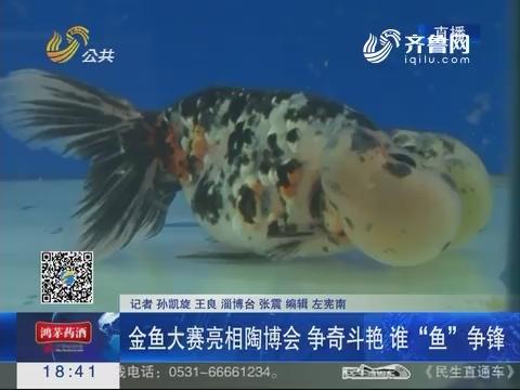 """淄博:金鱼大赛亮相陶博会 争奇斗艳谁""""鱼""""争锋"""