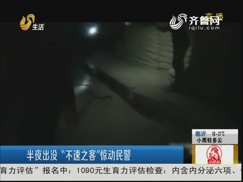 """淄博:半夜出没""""不速之客""""惊动民警"""