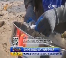 滨州发现黄渤海最大近江牡蛎资源分布区