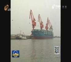 滨州发现黄渤海海域最大近江牡蛎分布区