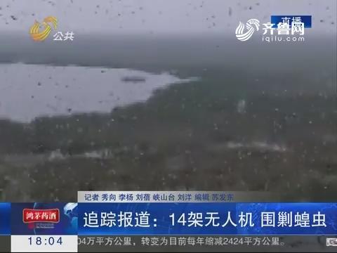 【追踪报道】潍坊:14架无人机 围剿蝗虫