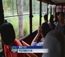 【喜迎十九大】开往幸福的小火车