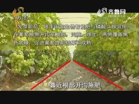20170913《品牌农资龙虎榜》:40集科普系列片《让土壤更健康》--土传病害一(下)