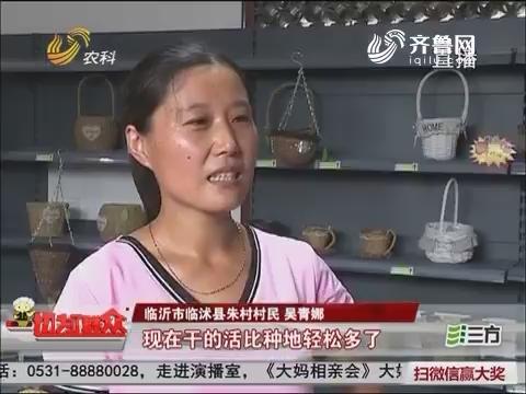 """【喜迎十九大收获这五年】临沭朱村:古村庄的""""蜕变""""路"""