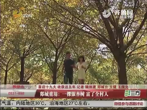 【喜迎十九大 收获这五年】郯城重坊:一颗银杏树 富了全村人