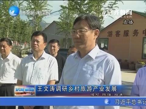 王文涛调研乡村旅游产业发展