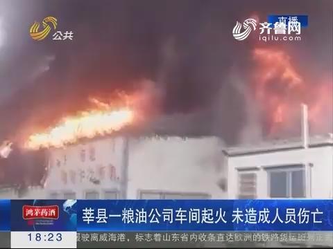 莘县一粮油公司车间起火 未造成人员伤亡