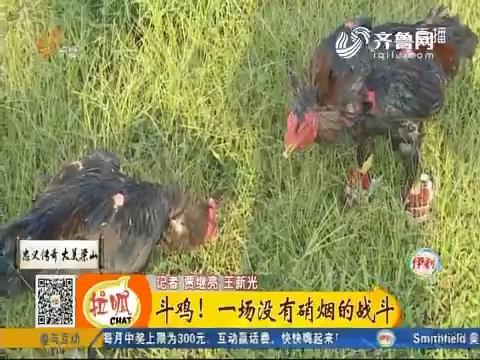 梁山:斗鸡!一场没有硝烟的战斗