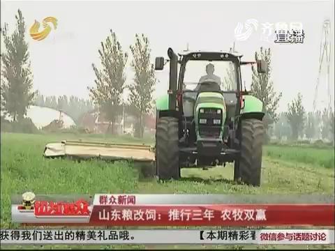 【群众新闻】山东粮改饲:推行三年 农牧双赢