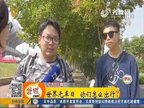 济南:世界无车日 你们怎么出行?