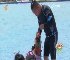 上阵父子兵:人狗接力欢乐多 进行搜救犬水上适应性训练