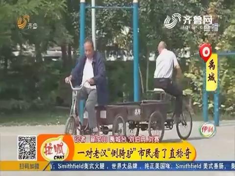 """禹城:一对老汉""""倒骑驴""""市民看了直称奇"""