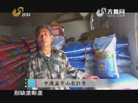 20171001《当前农事》:中澳益宇山农31号