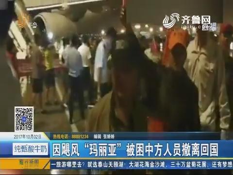 """因飓风""""玛丽亚""""被困中方人员撤离回国"""
