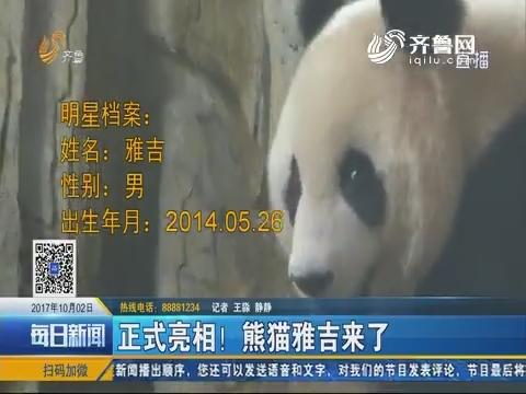 济南:正式亮相!熊猫雅吉来了