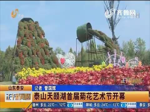 山东泰安:泰山天颐湖首届菊花艺术节开幕
