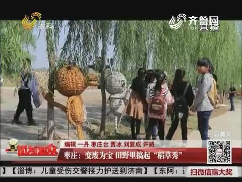 """枣庄:变废为宝 田野里搞起""""稻草秀"""""""