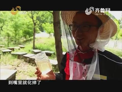 20171009《中国原产递》:全熟洋槐蜜