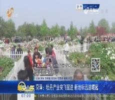 菏泽:牡丹产业突飞猛进 新地标迅速崛起