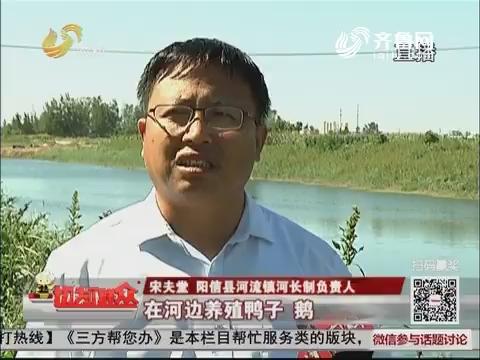 """【喜迎十九大 收获这五年】阳信:河道有了""""监护人"""" """"河长""""治水换新颜"""