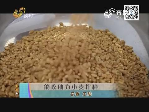 能攻助力小麦拌种