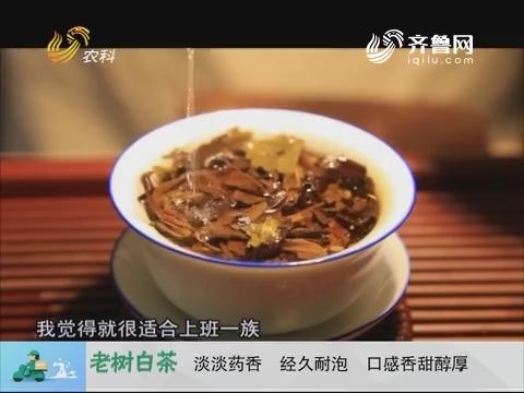 20171013《中国原产递》:老树白茶