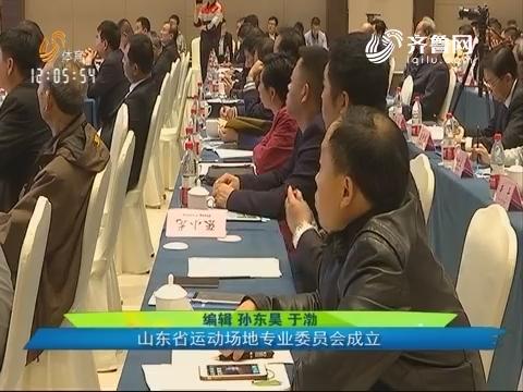 关注青少年运动健康 山东省运动场地专业委员会成立