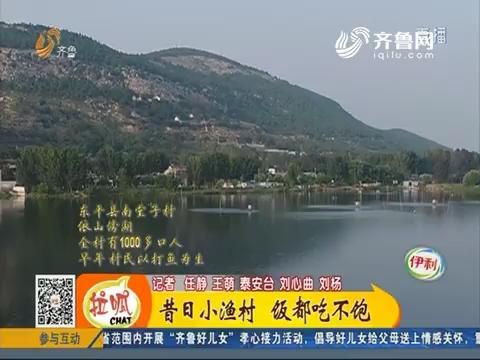 【齐鲁最美乡村】东平:昔日小渔村 饭都吃不饱