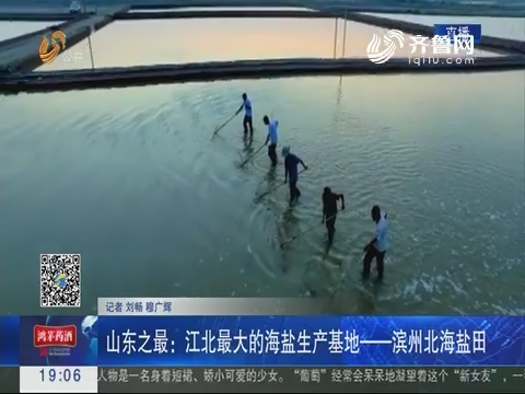 山东之最:江北最大的海盐生产基地——滨州北海盐田