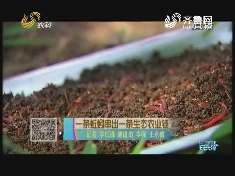 一条蚯蚓串出一条生态农业链
