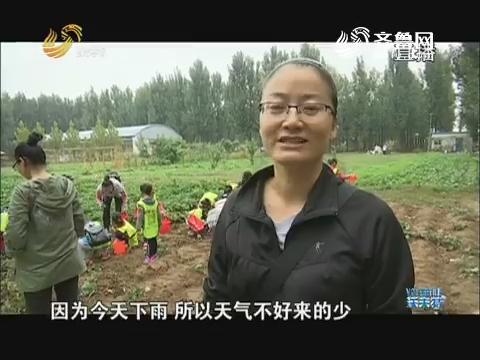 野丫头的农庄梦