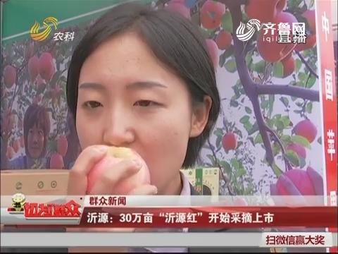 """【群众新闻】沂源:30万亩""""沂源红""""开始采摘上市"""