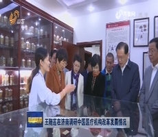 王随莲在济南调研中医医疗机构改革发展情况