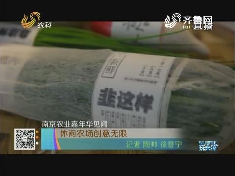 【南京农业嘉年华见闻】休闲农场创意无限