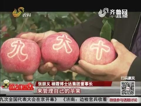 """十九大时光:栖霞""""十九大""""苹果 向十九大献礼"""