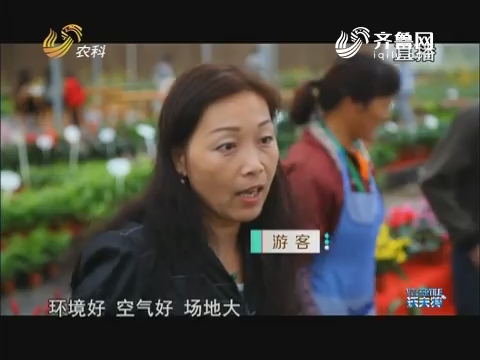 """【南京农业嘉年华见闻】""""陌上花渡""""亲子农游好去处"""