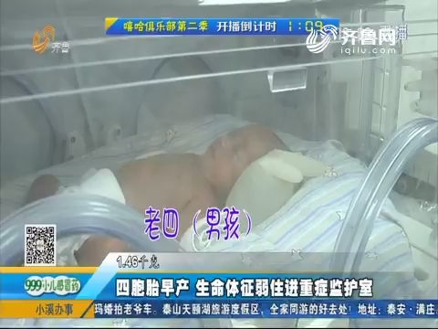 四胞胎早产 生命体征弱住进重症监护室