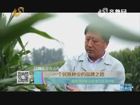 【品牌农业在山东】一个民族种业的品牌之路