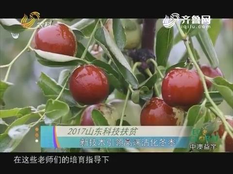 20171021《农科直播间》:2017山东科技扶贫——新技术引领高端沾化冬枣