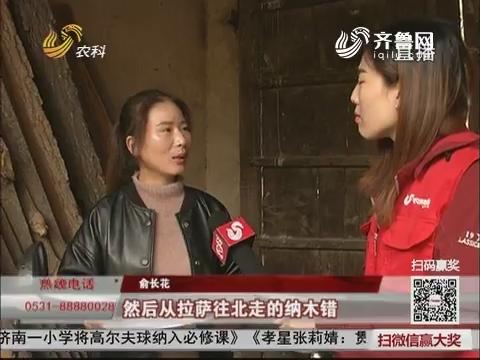 【三方帮您办】30678公里!菏泽姑娘摩托骑行中国