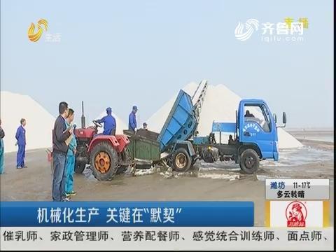 潍坊:捞盐PK 食盐是怎么生产的?
