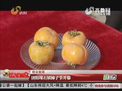 【群众新闻】济阳垛石镇柿子节开幕