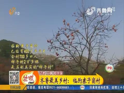 齐鲁最美乡村:临朐寨子崮村