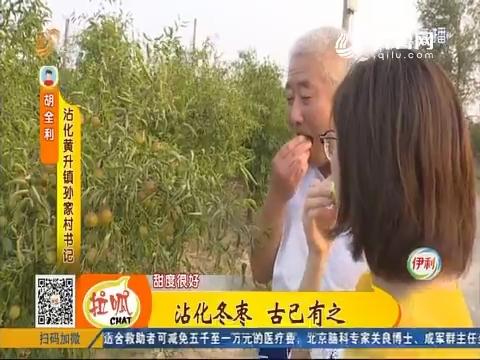 【拉呱实验室】沾化:沾化冬枣 古已有之