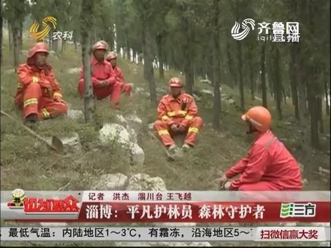 淄博:平凡护林员 森林守护者