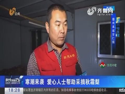 【闪电连线】禹城:寒潮来袭 爱心人士帮助采摘秋霜梨