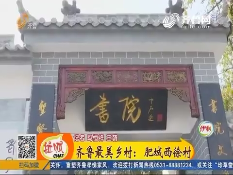齐鲁最美乡村:肥城西徐村