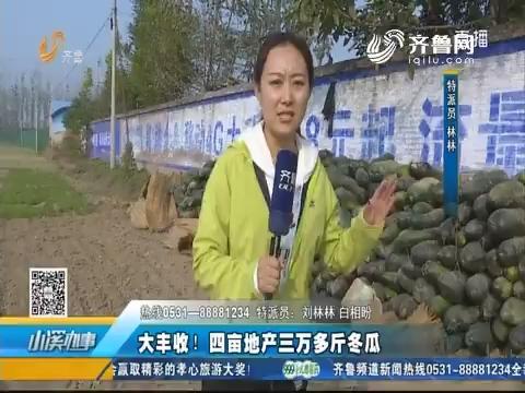 济宁:大丰收!四亩地产三万多斤冬瓜